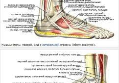 Боль в голеностопном суставе: причины и лечение