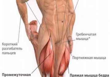 Боль в бедренной мышце: причины и методы лечения