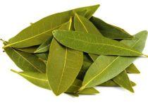 Лечение суставов лавровым листом — рецепты приготовления настоек и отваров