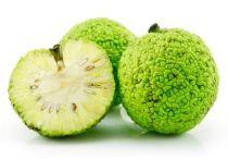 Адамово яблоко — рецепт настойки для суставов, полезные свойства маклюры