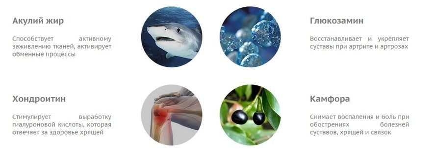 Состав акульего жира
