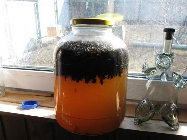 Отвар пчелиного подмора