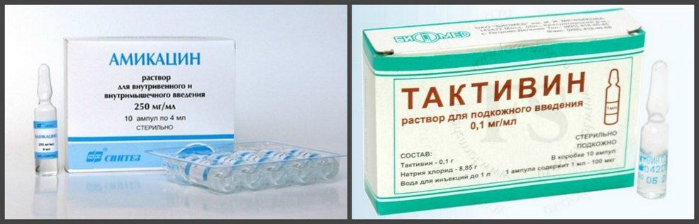 Амикацин и Тактивин
