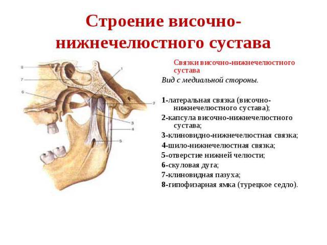 Изображение - Височно нижнечелюстной сустав болит с одной стороны 56bbc81331cfe