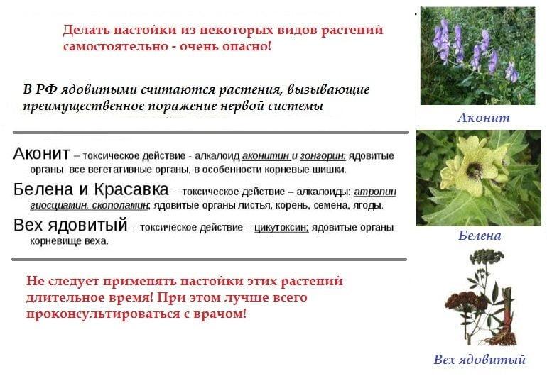 Памятка о настойках из ядовитых растений