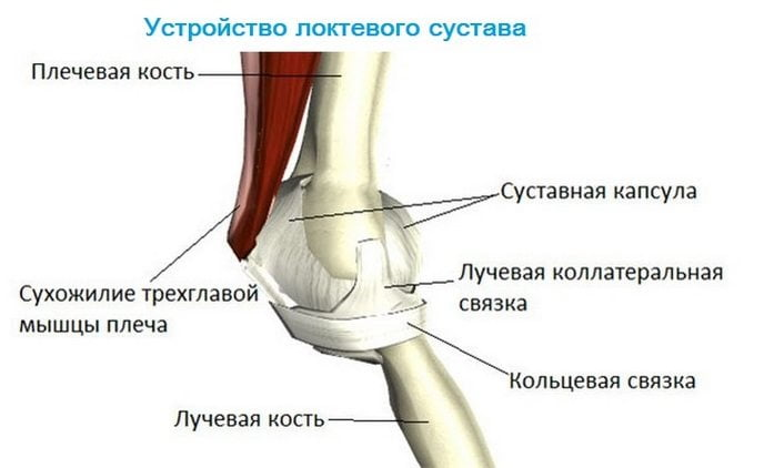 Боль в локтевом суставе с внутренней стороны