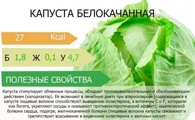 Польза капусты