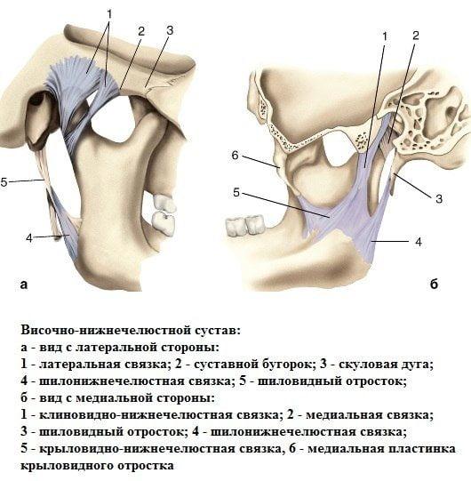 Воспаление челюстного сустава лечение