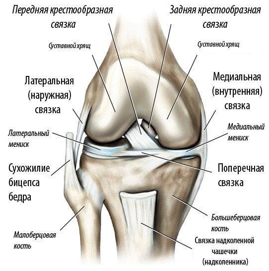 Симптомы и лечение разрыва или повреждения мениска коленного сустава