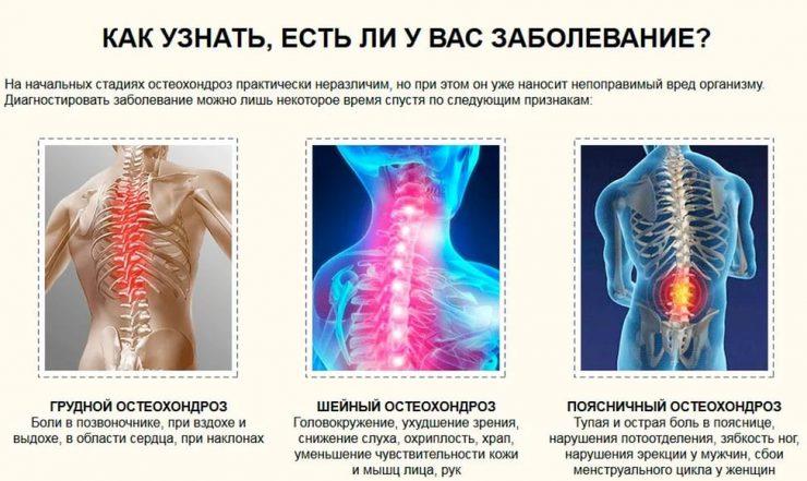 Тренажер для укрепления мышц спины грудного отдела