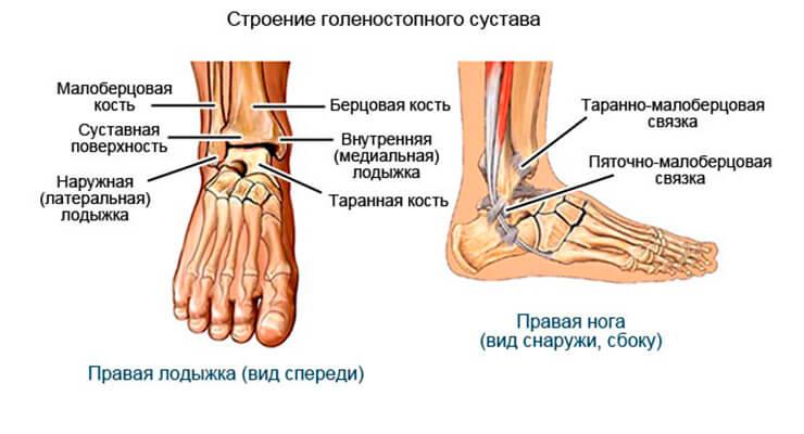 Деформирующий артроз голеностопного сустава остеоартроз