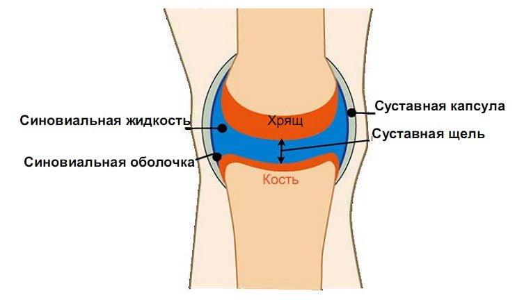 Изображение - Восстановление жидкости в суставах 65-3