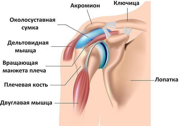 Синовит плечевого сустава гимнастика