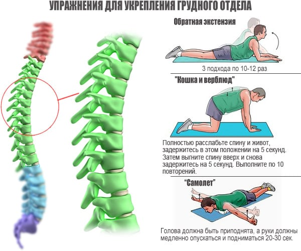 Комплекс упражнений для спины от остеохондроза видео